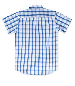 Blue-toned check shirt.