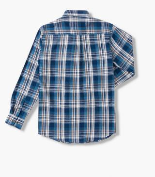Blue flannel shirt.